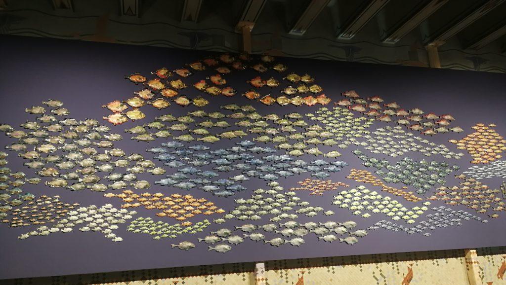 biennale poisson